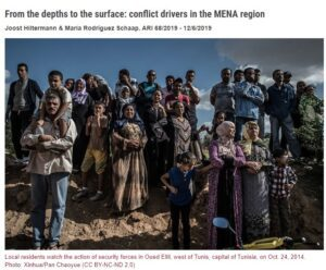 From the depths to the surface: conflict drivers in the MENA region